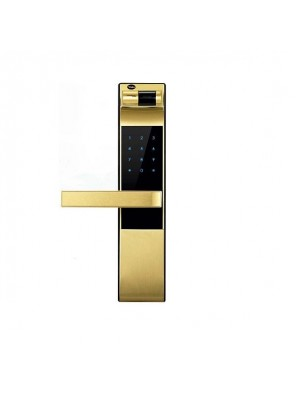 YALE Electronic Mortise Lock (Card) (Gold) (086150)-YDM3109