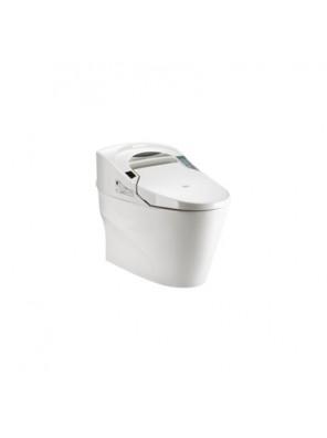 Potex  Intelligent One-Piece Toilet (BO:300) White  DT-1101