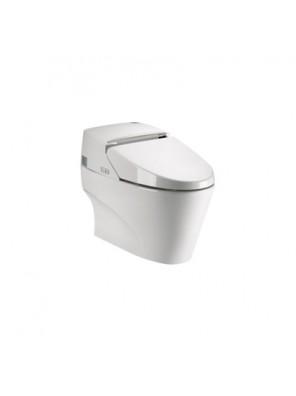 Potex  Intelligent One-Piece Toilet (BO:300) White DT-1105