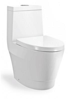 ZELLA Wash Down 1Piece Water Closet S Trap250mm(White) C-622