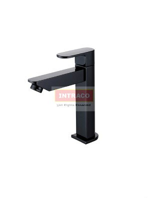 AIMER Brass Black Basin Cold Tap AMFC-7570
